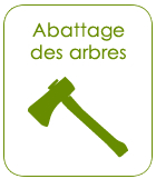 abattage-arbres